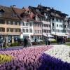 Körutazások Svájcban