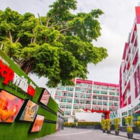 Hotel Sleep With Me Design Hotel & Patong **** Phuket