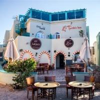 Hotel Turtle's Inn *** El Gouna
