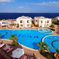 Hotel Amphoras Blu (ex.Shores Aloha) **** Sharm El Sheikh