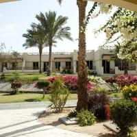 Hotel Coral Beach Resort **** Hurghada